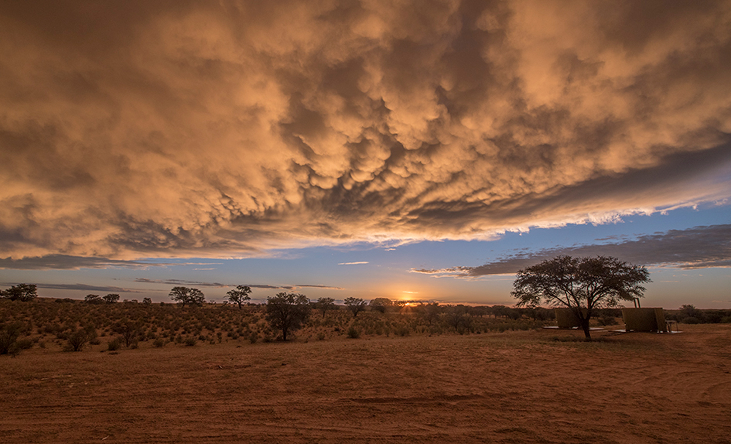 A dramatic landscape in Kgalagadi Transfrontier Park, South Africa ©Melanie Maske