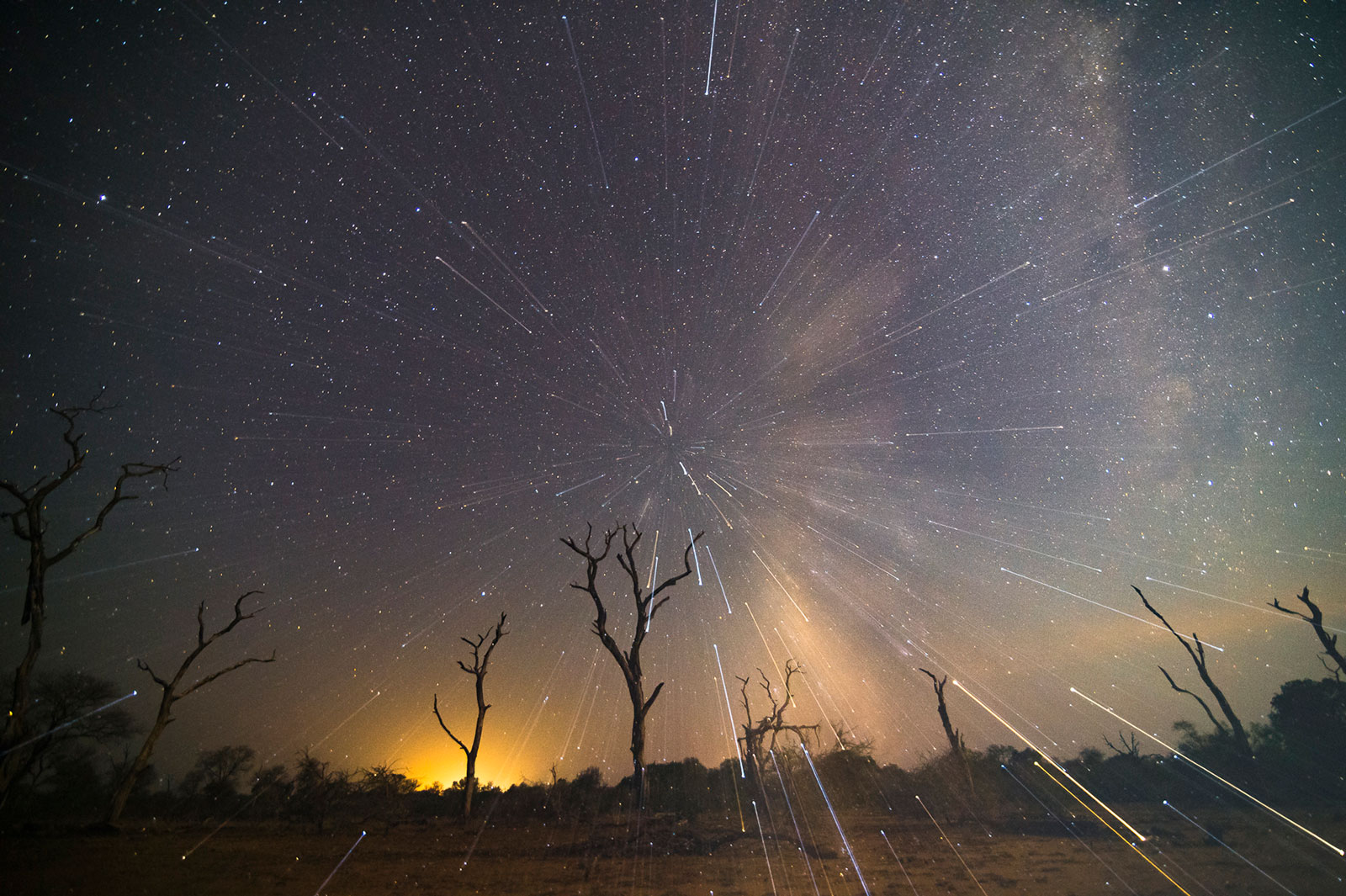Star burst in Sabi Sand Game Reserve, South Africa ©Andrew Schoeman