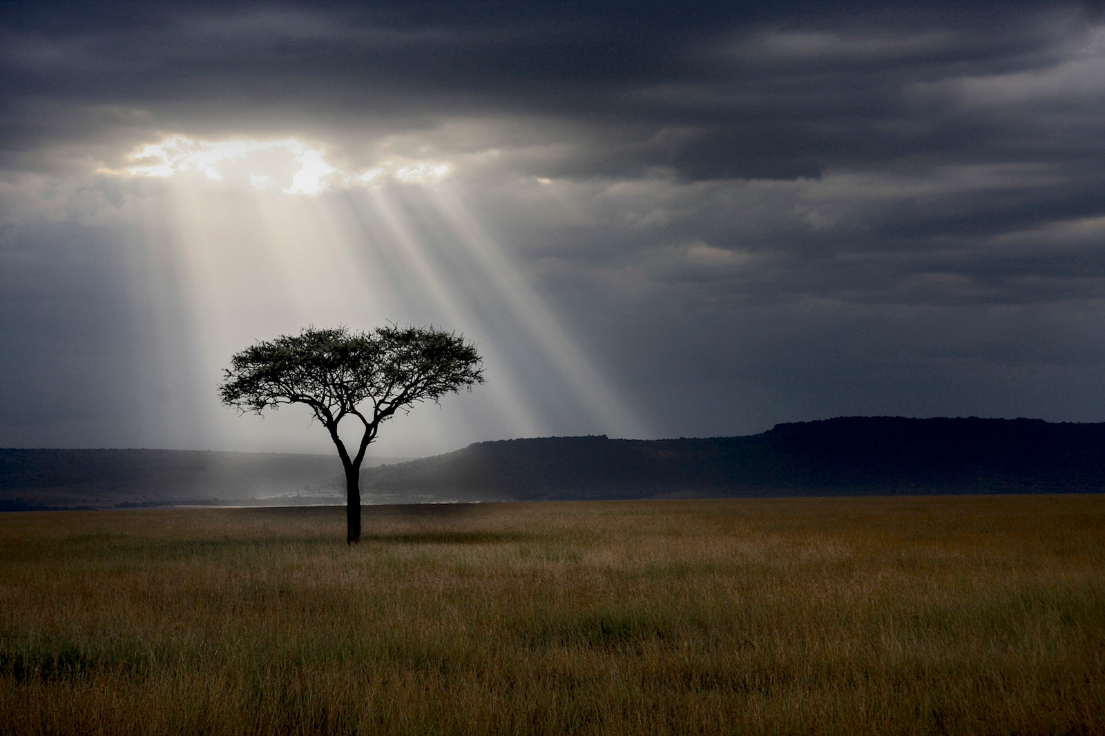 After the storm in Maasai Mara National Reserve, Kenya ©Nicolas de Vaulx