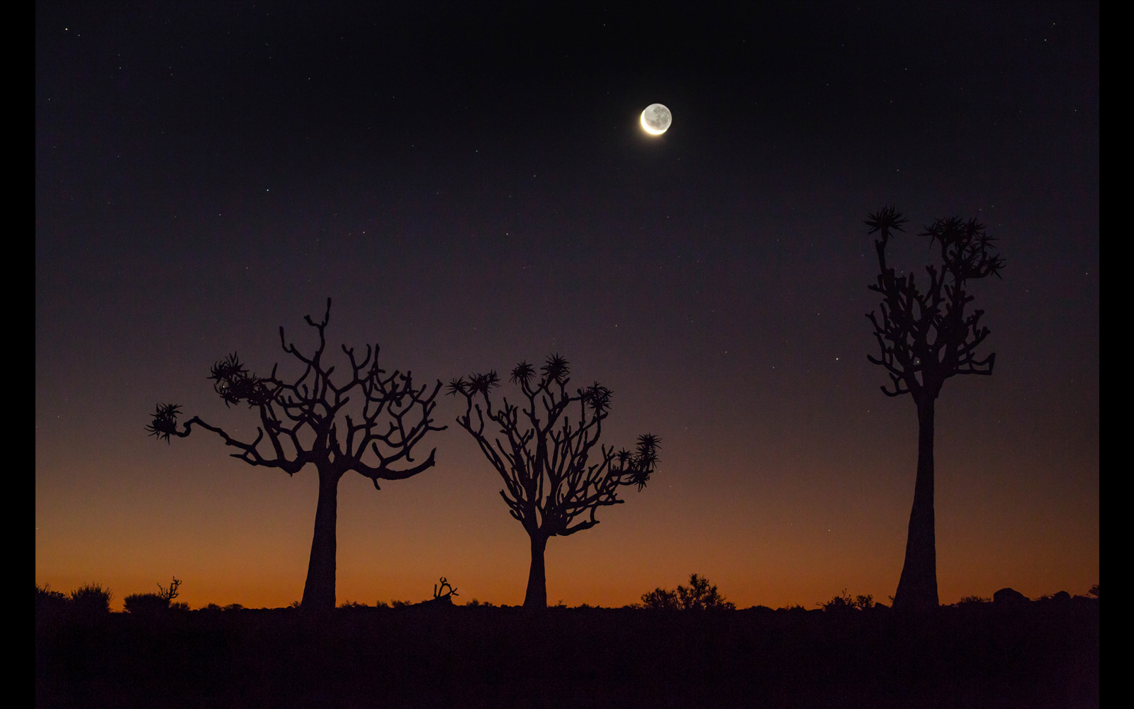 Looking for the man on the moon in Namibia © Jashika Patel