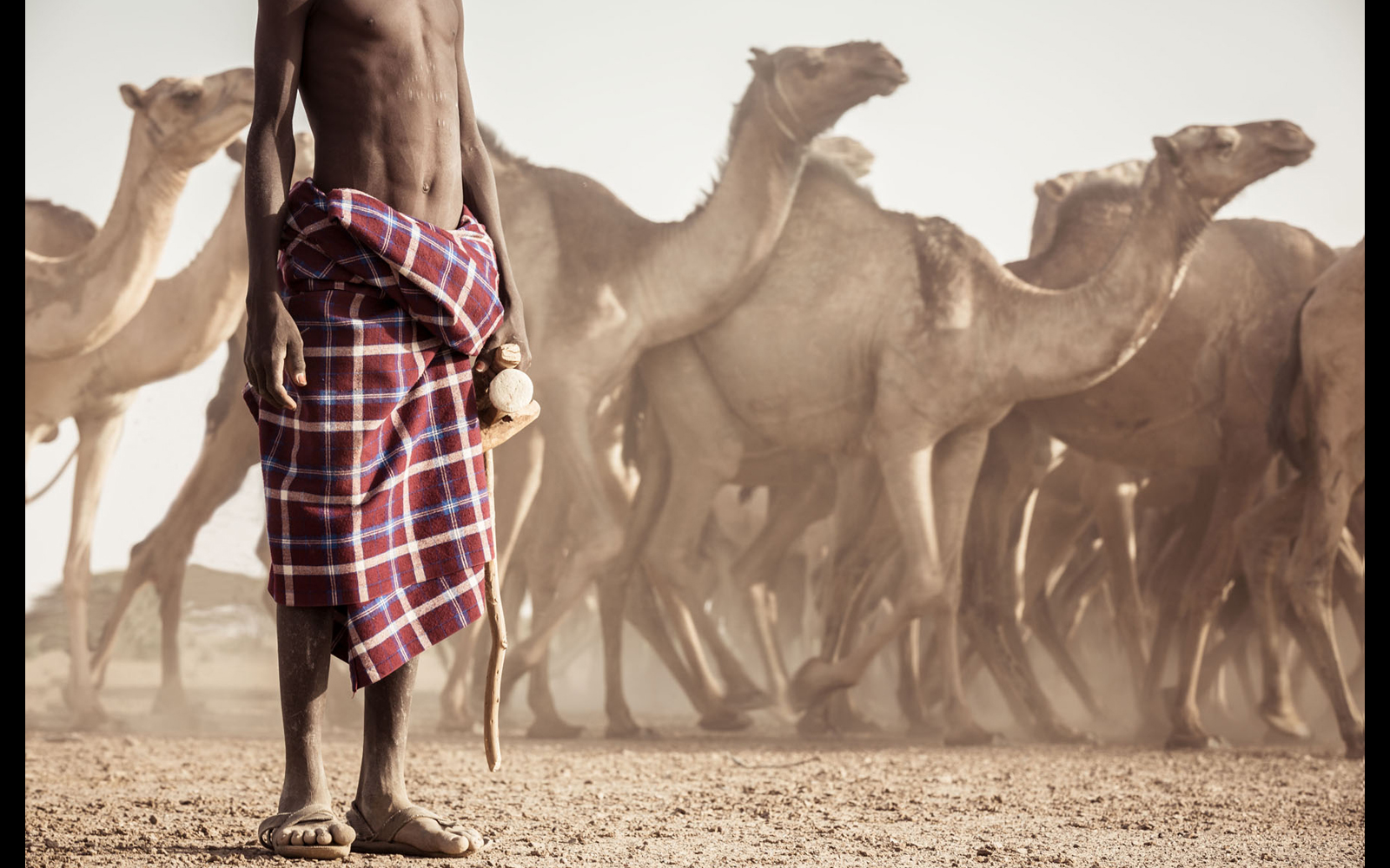 "A young Turkana herder and his camels © <a href=""https://content.notesfromtheroad.ch/turkana-cradle-of-mankind/"" target=""_blank""> Joe Bürgi  </a>"