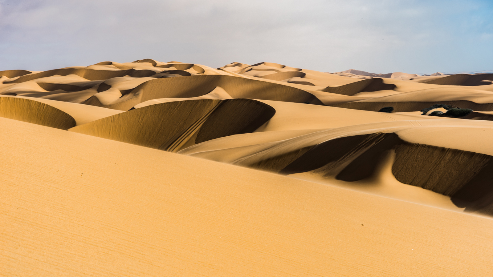 The shifting sands of the Skeleton Coast, Namibia ©Andrea Galli