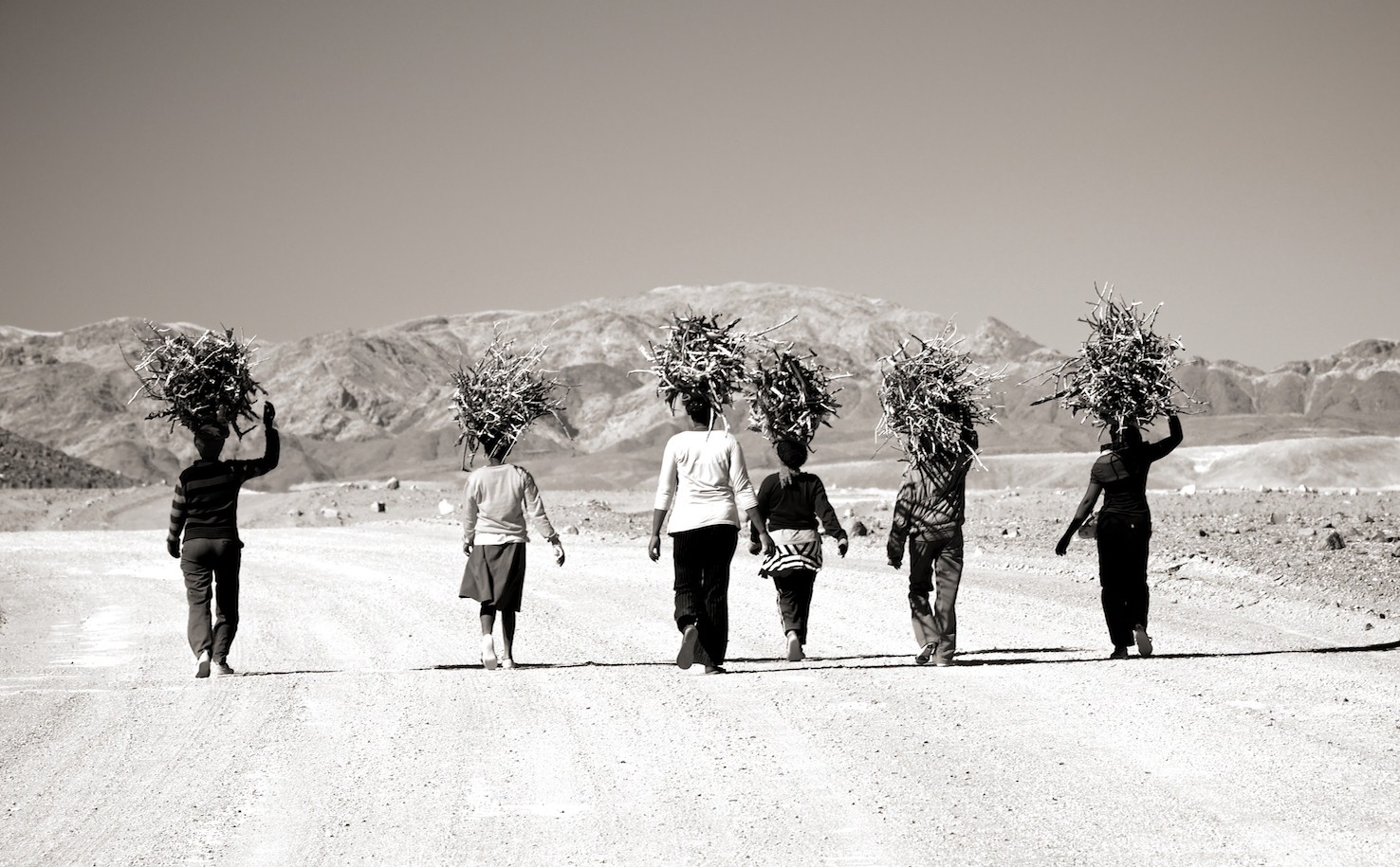 Villagers in southern Namibia walk miles in the desert heat to get firewood back to their village before dark ©Neil Bradfield