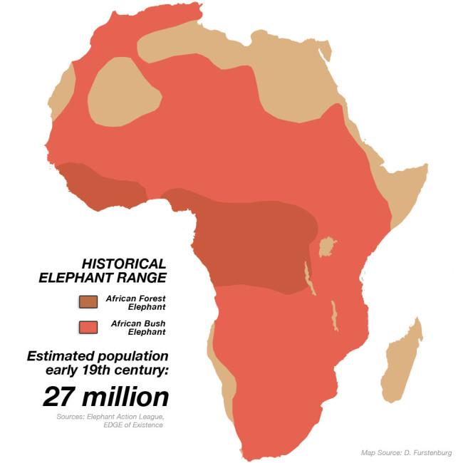 hist-africa
