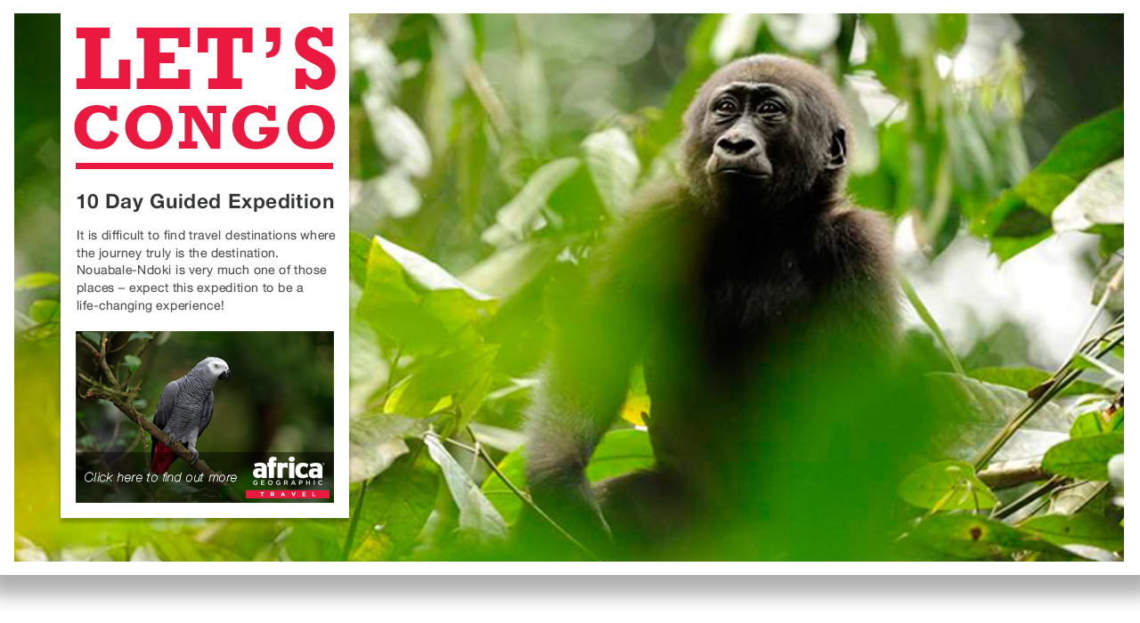 MSA_Mag_Congo_v4