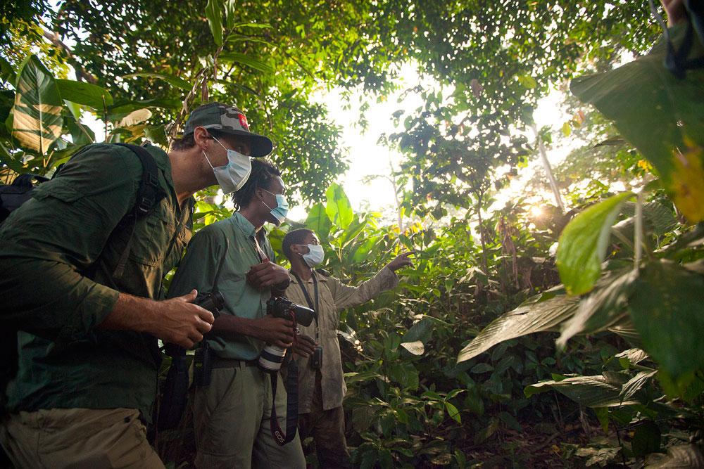 congo-gorillas-tourists-sophie-smith