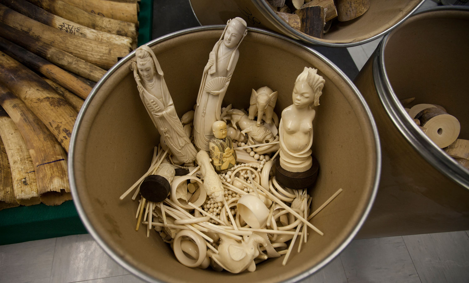 ivory-trade-africa-geographic