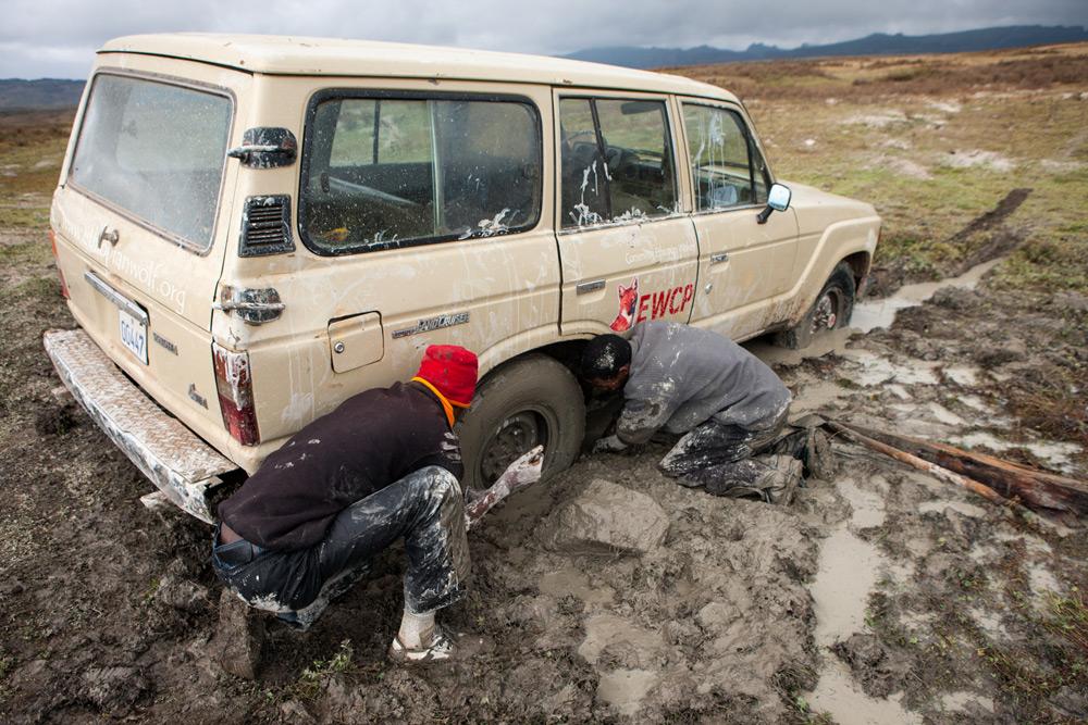 stuck-in-mud-will-burrard-lucas