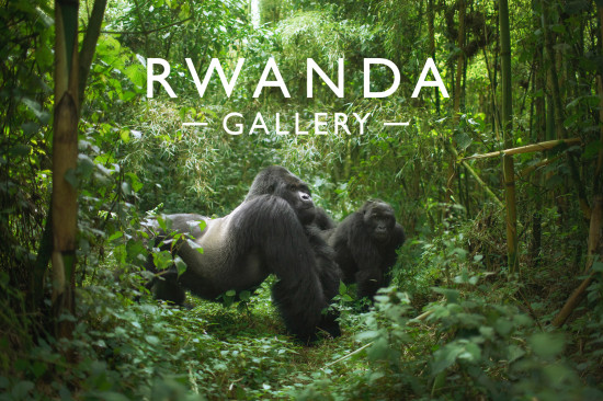 RWANDA_gallery-header
