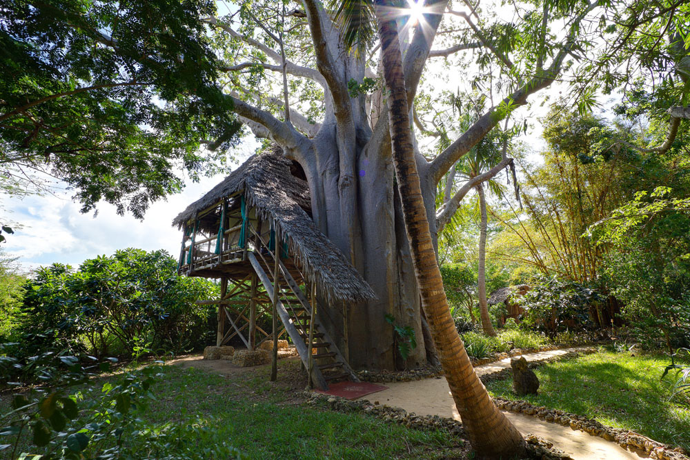 Chole-Mjini-Lodge---Treehouse-exterior2