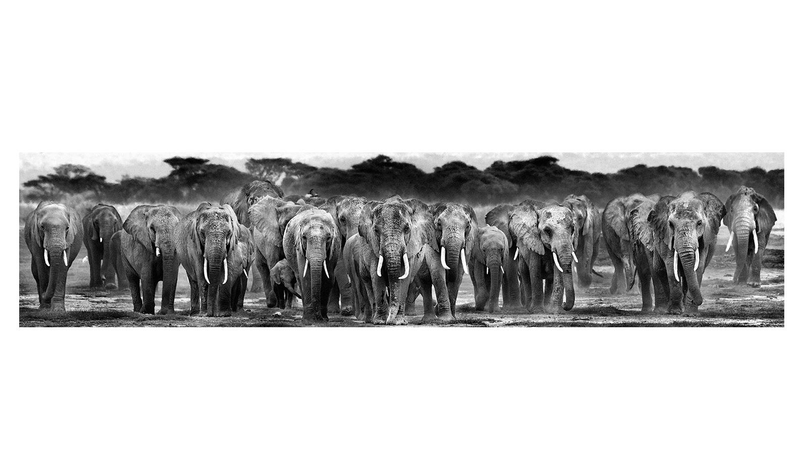 safari magazine gujarati pdf free download 2017