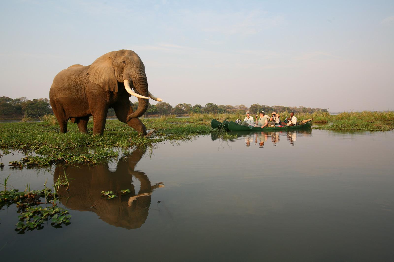 Nature-Ways-Canoe-safaris-ZIm
