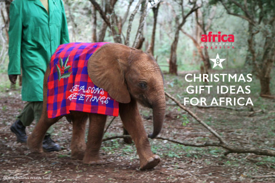 Xmas-gift-ideas-for-africa-3