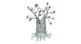 baobab-small-4