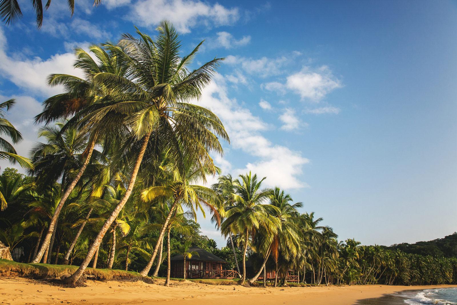 palm-beaches-principe-Artur-Cabral-CZ3B4407-Editar