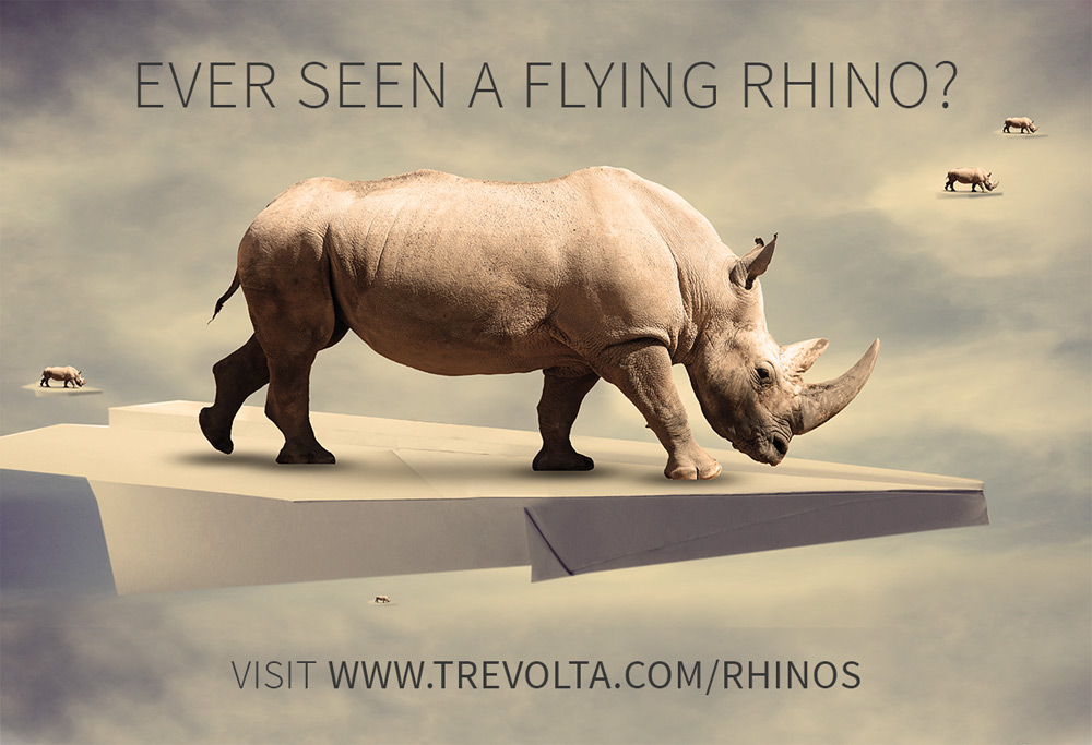rhino-flying