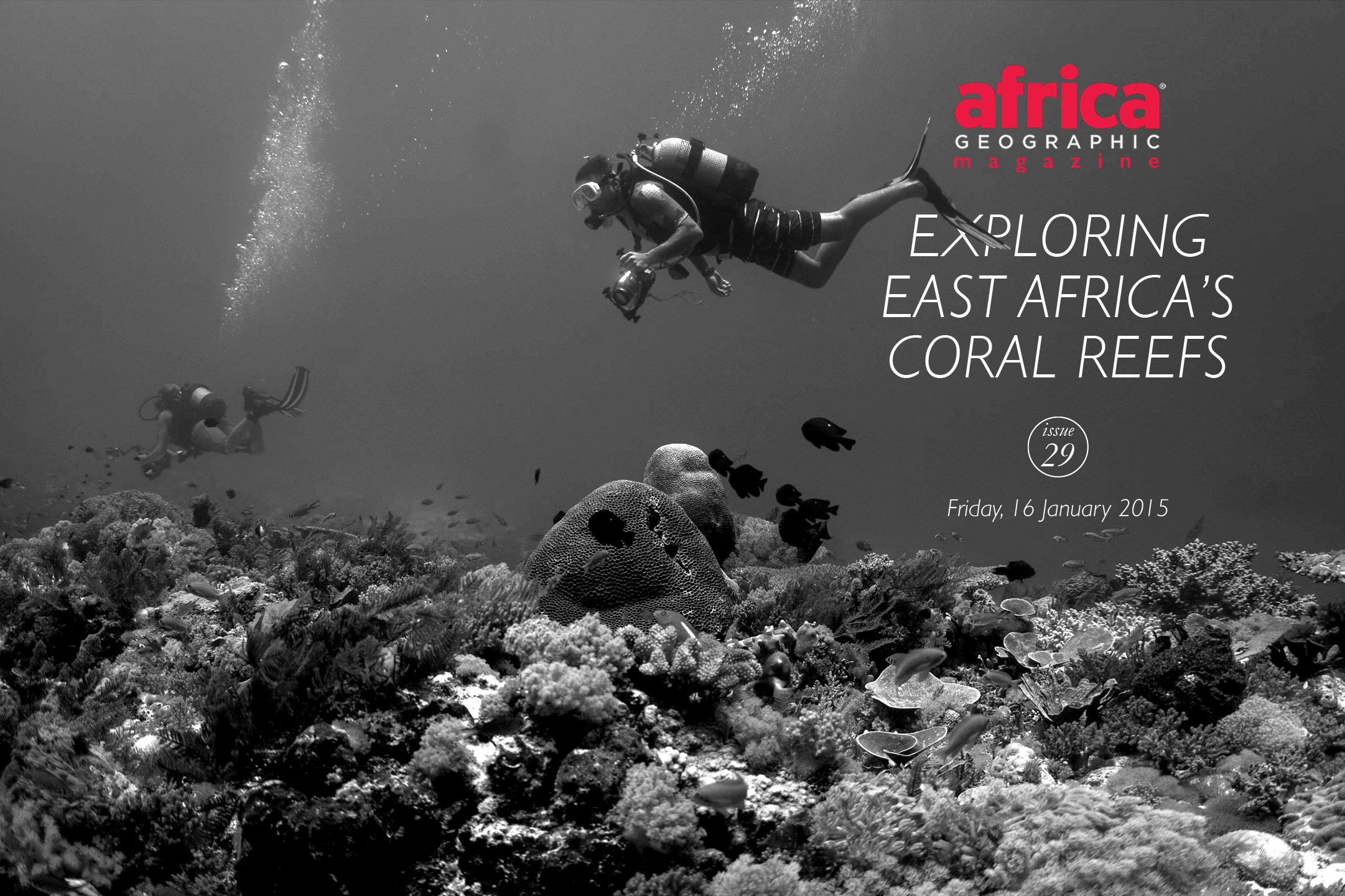 Africa's-coral-reef-diving-cover