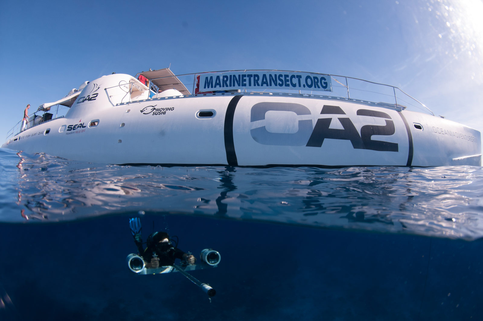 East-african-coral-reef-diving-Copyright-Caine-Delacy-2012-2808