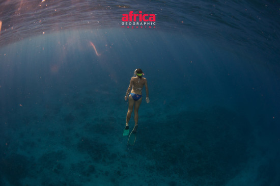 coral-reef-expedition-header-test