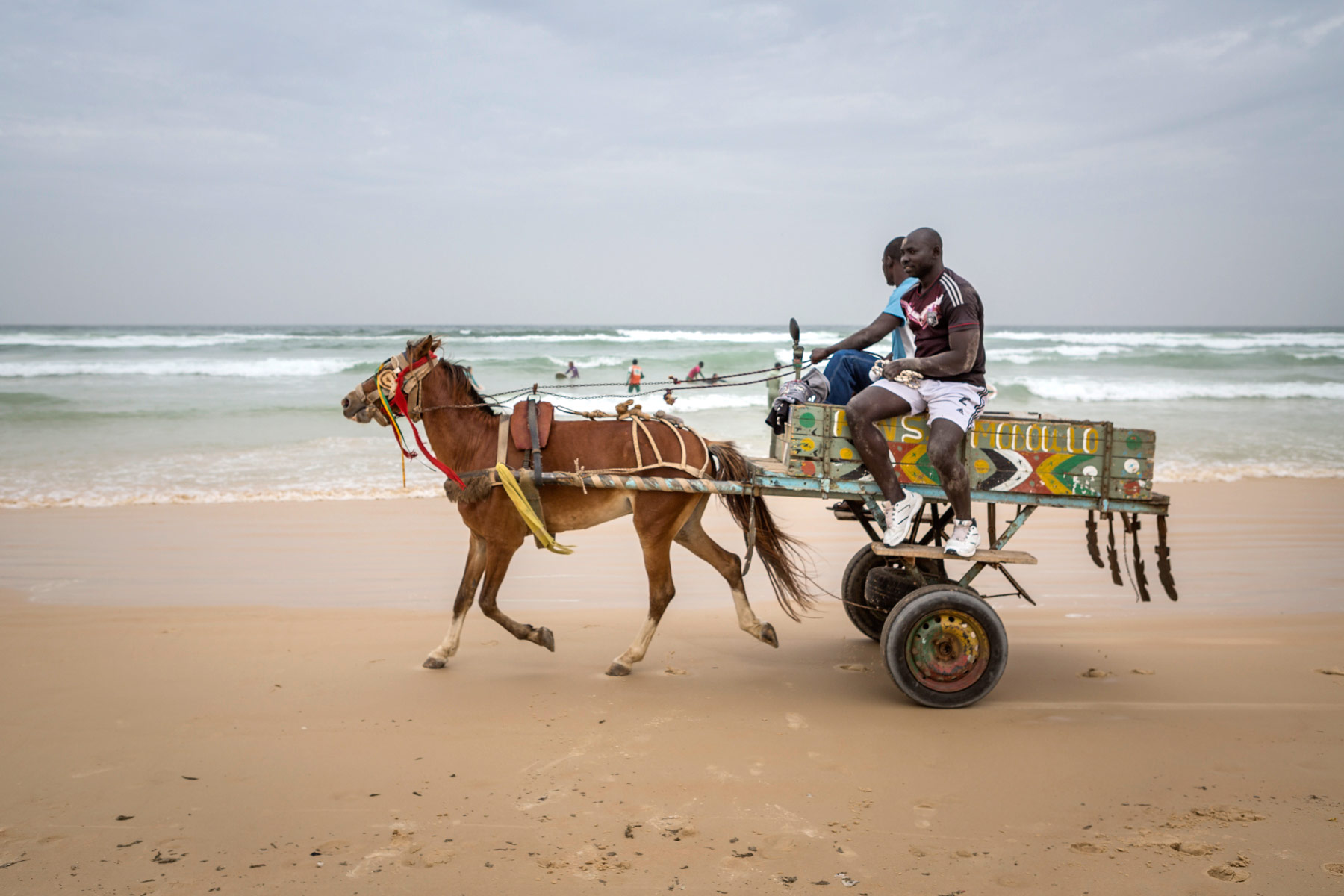 donkey-cart-on-beach_BobbiLe-Ba-Photography_2015-111