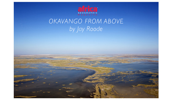 okavango-landscape-from-the-air-2