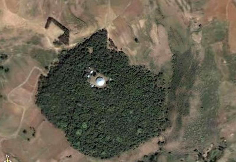 Debresena-church-forest--South-Gondar,-Ethiopia-