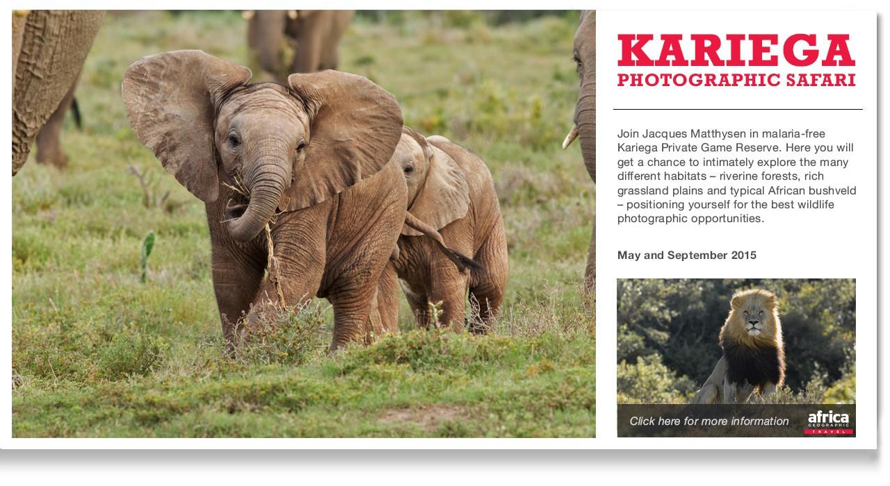 Kariega-In-story-Ad