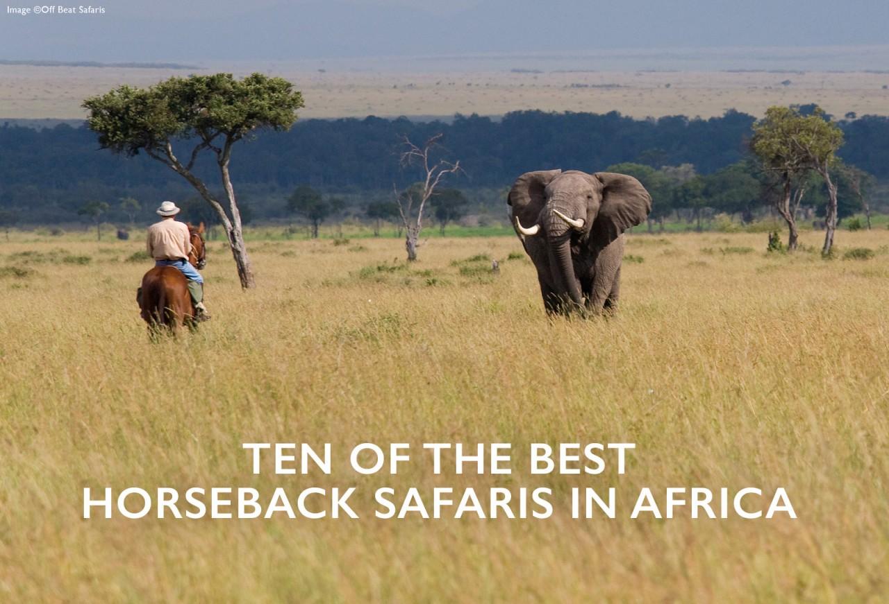 10 of the best horseback safaris in Africa - Africa ...