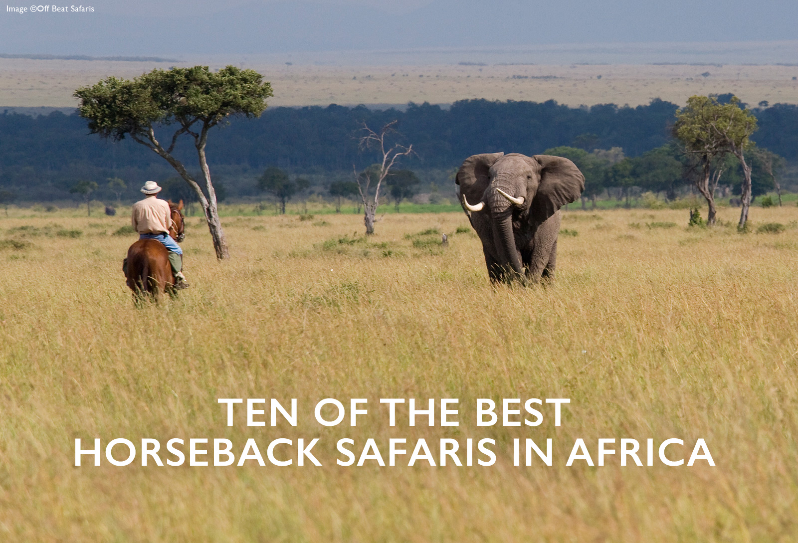 Of The Best Horseback Safaris In Africa Africa Geographic - 10 best safaris in africa