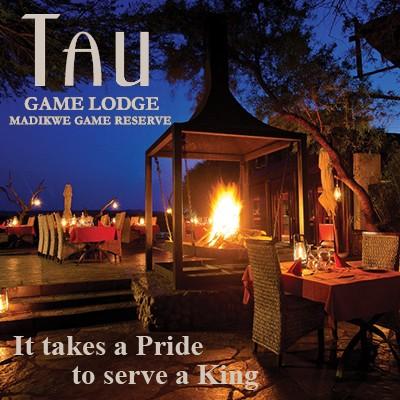 TAU_Online_Magazine-1