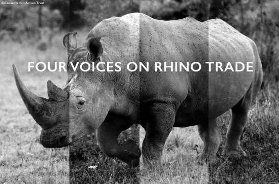 white-rhino-header 2