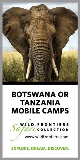 wildfrontiers-botswana-tanzania-camp