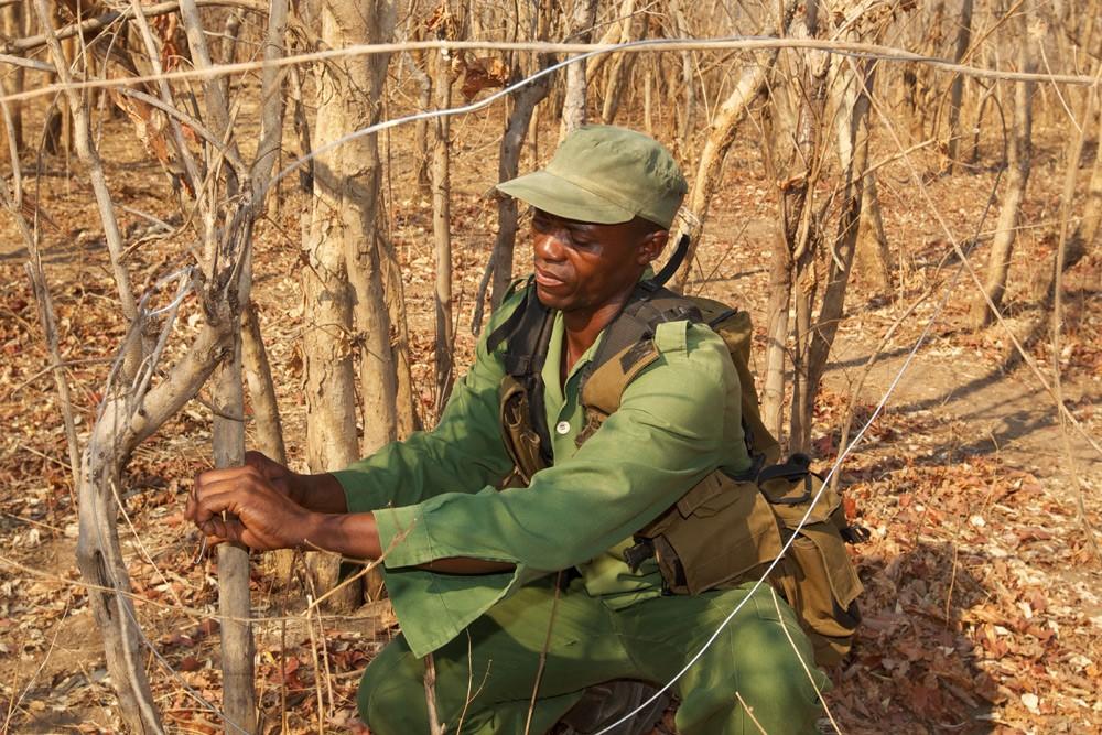 South-Luangwa-250-(SLCS-Village-Scouts)