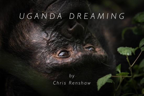 Uganda-dreaming-header