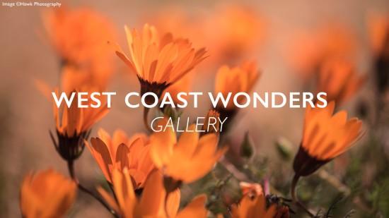 West-coast-wonders-gallery