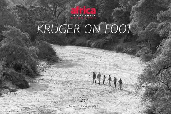 Kruger-on-Foot