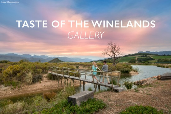 taste-of-winleands-gallery-header-cape-winelands2