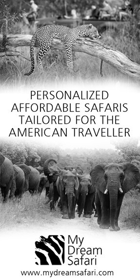 Southern-African-Safaris-My-Dream-Safari-3