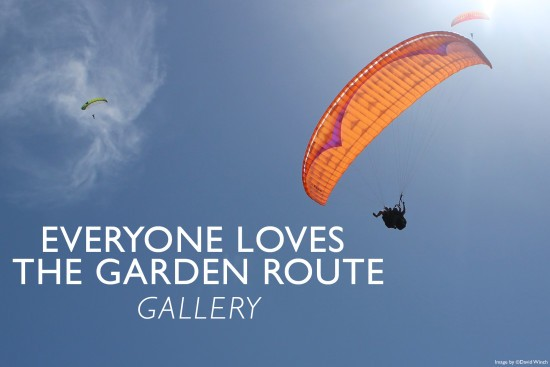 everyone-loves-the-garden-route-gallery