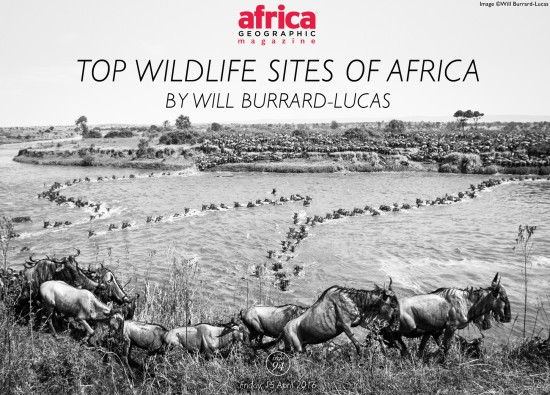 top-wildlife-sites-of-africa-will-burrard-lucas