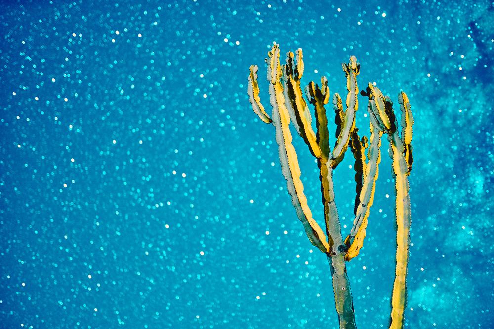 night-sky-waterberg