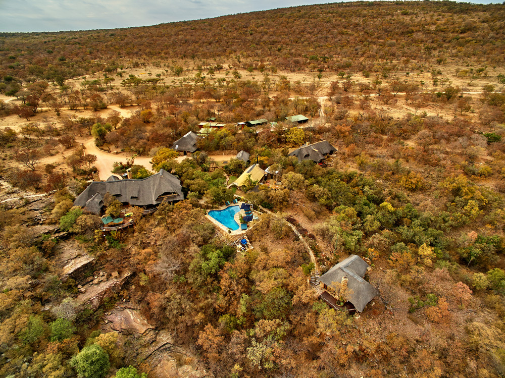 waterberg-the-ant-collection