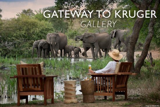 gateway-to-kruger-tanda-tula