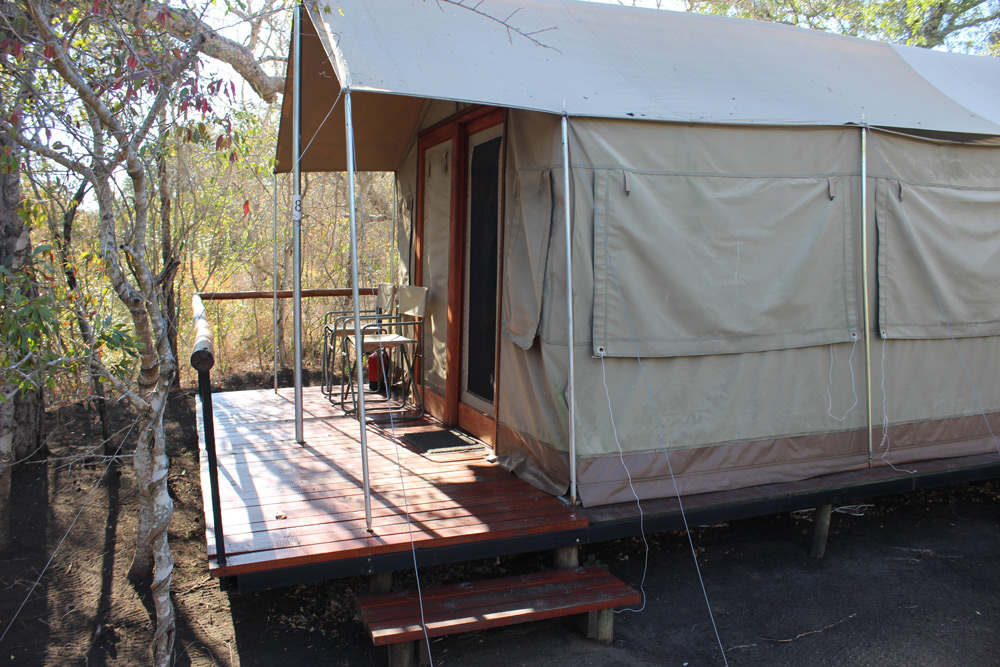 olive-tree-camp-simon-espley