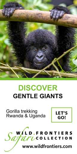 wild-frontiers-rwanda