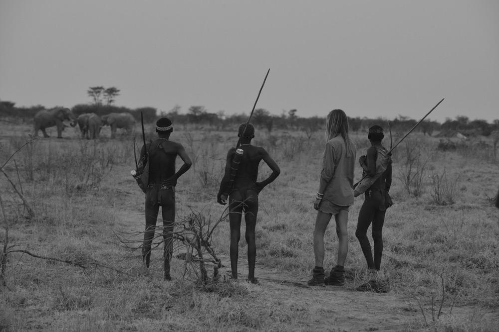watching-elephants-san-namibia