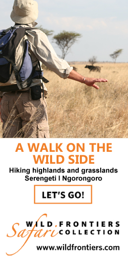 wild-frontiers-walk-on-wild-side