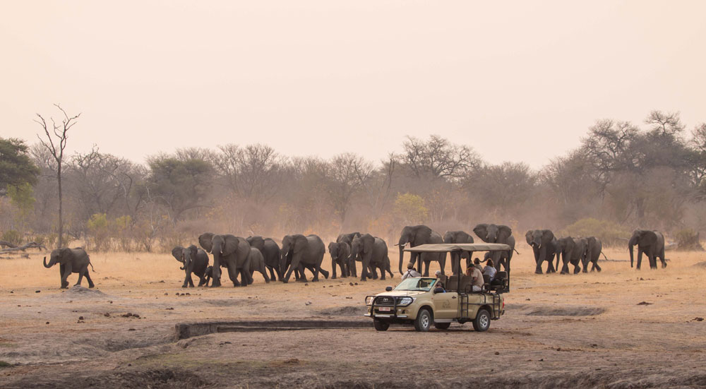 An evening game drive at The Hide