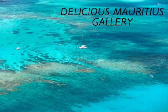 delicious-mauritius-gallery
