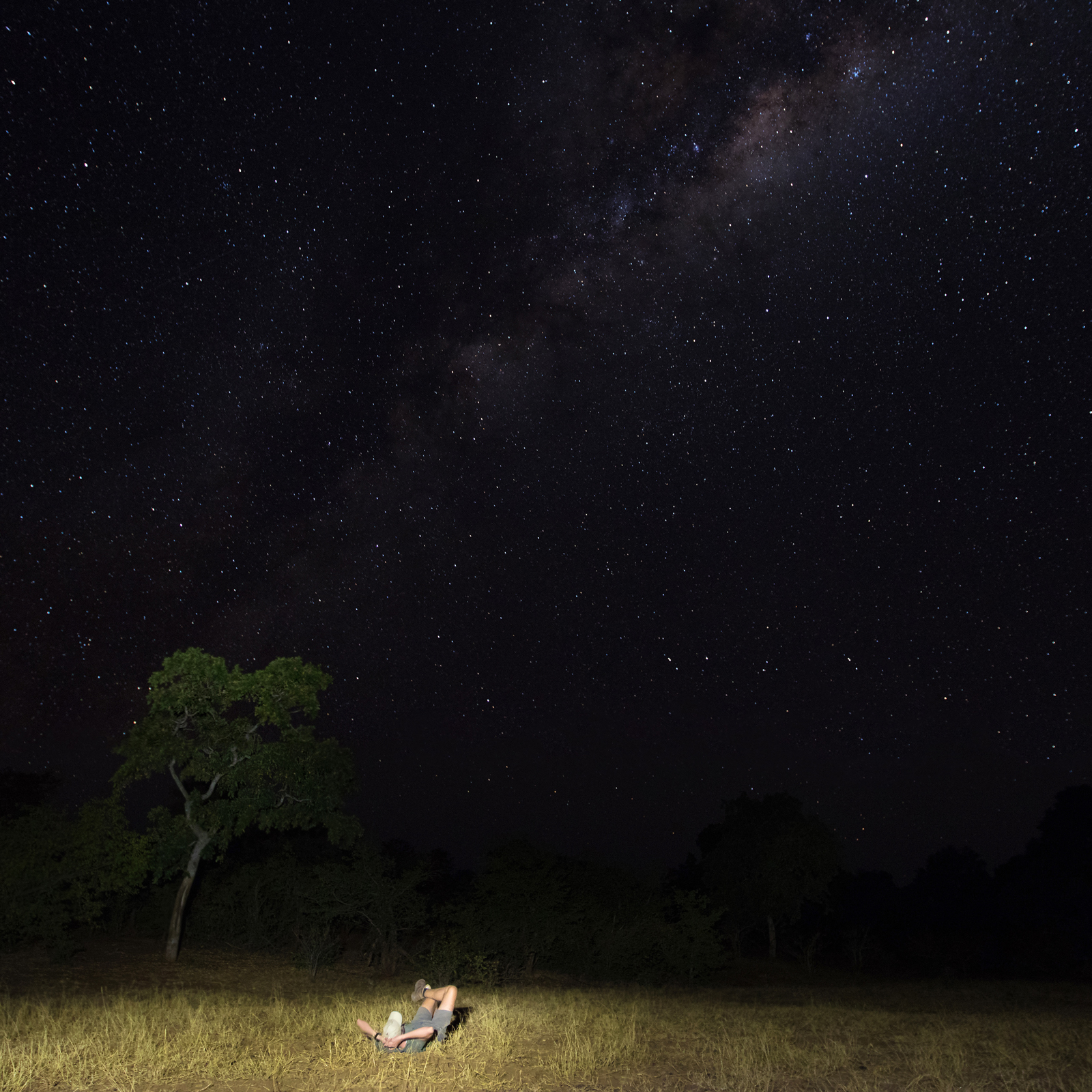 Kruger-National-Park-stars